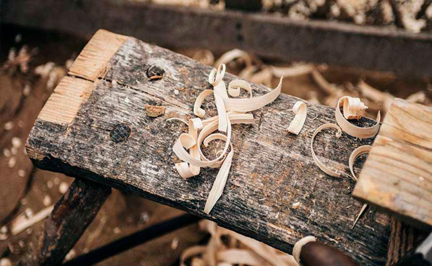 Seja um expert da madeira: conheça mais sobre nossa matéria-prima