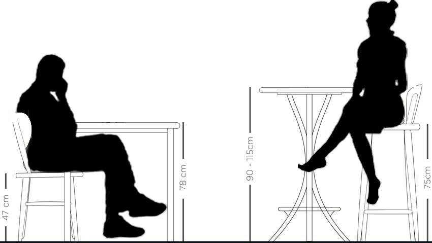 Figura ilustrativa
