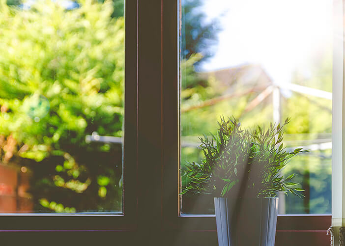 Vaso de planta verde em foco na frente da janela de vidro