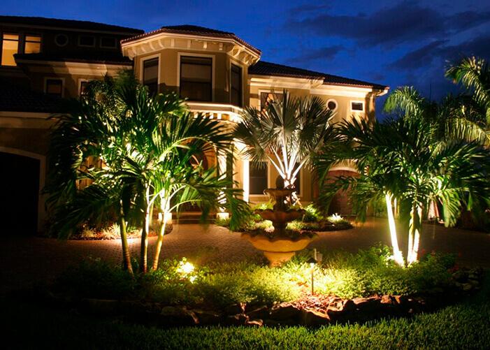 Jardim na frente da casa com vários coqueiros com refletores verdes os iluminando_