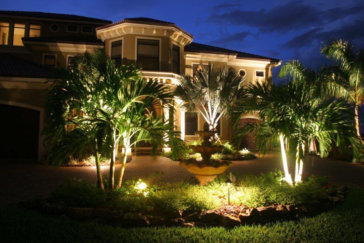 Jardim na frente da casa com vários coqueiros com refletores verdes os iluminando.