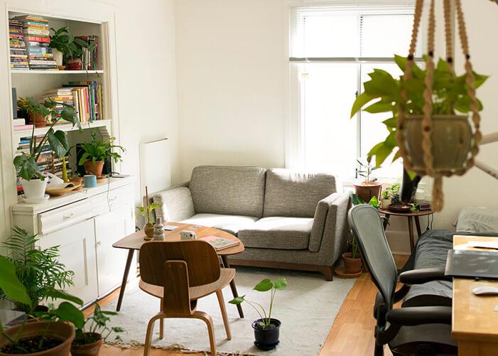 Sala de estar com sofá cinza, prateleira com livros e plantas espalhadas