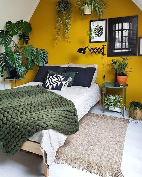 Quarto com parede amarela e várias plantas deocrativasQuarto com parede amarela e várias plantas decorativas