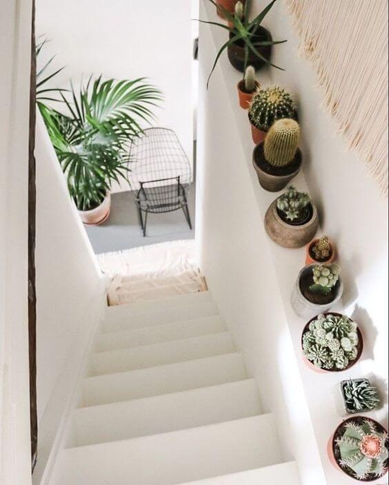escada branca com vasinhos de cactos