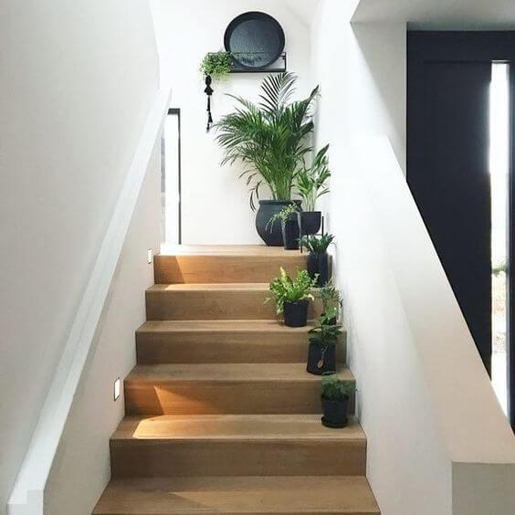 escada de madeira com vasos de várias plantas