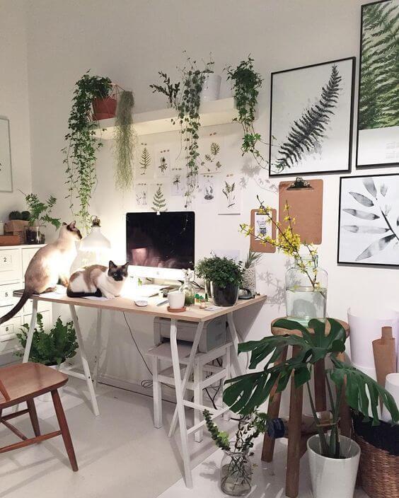 Escritório com muitas plantas