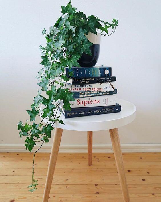 mesinha redonda branca apoiando uma pilha de livros com um vaso de uma hera inglesa em cima